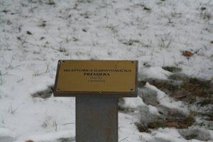 """Skulptūra """"Premjera"""". Aivaro Neimonto nuotrauka"""