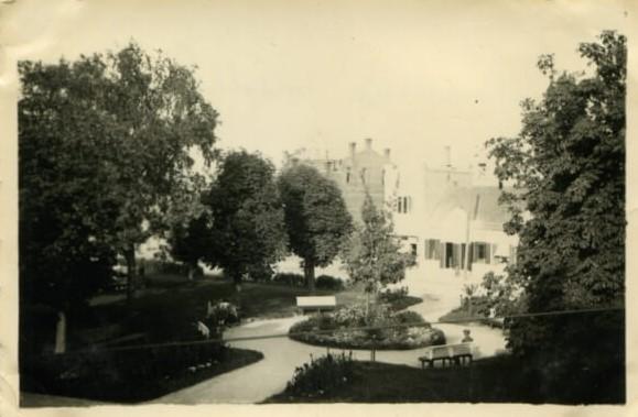 """1. """"Vilniaus"""" medis Panevėžyje. XX a. 4 deš. Nuotrauka iš V. Vyšniausko archyvo"""