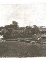 5. Panevėžio piliakalnis