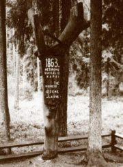 1863 m. sukilimo keliu