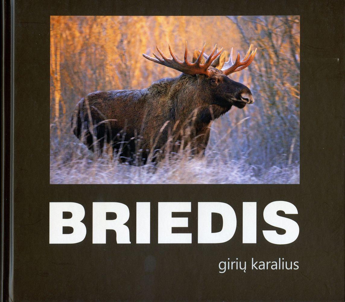 Briedis - girių karalius