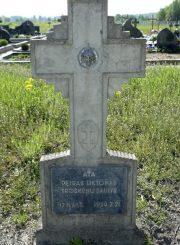 3. Žuvusio šaulio Petro Liktoro kapas Troškūnų kapinėse. 2012 m. E. Markuckytės nuotrauka