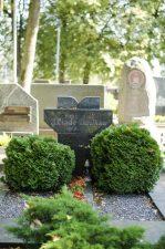 Julijono Lindės-Dobilo antkapinis paminklas. Astos Rimkūnienės nuotrauka