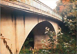 8. Tiltas per Apaščią Nemunėlio Radviliškyje. 1996 09 26