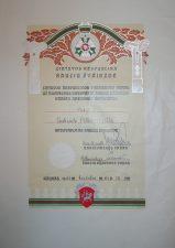 Gabrielės Petkevičiūtės [Petkevičaitės] apdovanojimo Šaulių Žvaigžde už nuopelnus Lietuvai ir Šaulių sąjungai pažymėjimas. 1937 m. birželio 24 d. LLTI MB F30-864