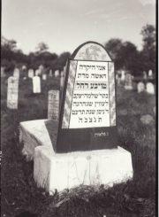 3.Antkapinis paminklas Panevėžio žydų kapinėse. XX a. 4 deš. Nuotrauka iš Panevėžio kraštotyros muziejaus rinkinio