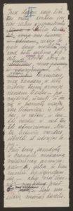 Gabrielės Petkevičaitės-Bitės kalbos, pasakytos atidarant Steigiamąjį Seimą, autorinis rankraštis. LMAVB F190-37, l.2