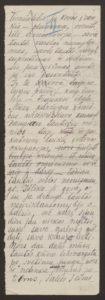 Gabrielės Petkevičaitės-Bitės kalbos, pasakytos atidarant Steigiamąjį Seimą, autorinis rankraštis. LMAVB F190-37, l.3