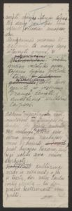 Gabrielės Petkevičaitės-Bitės kalbos, pasakytos atidarant Steigiamąjį Seimą, autorinis rankraštis. LMAVB F190-37, l.6