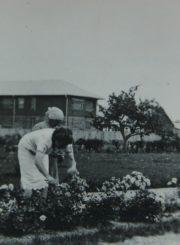 Panevėžio mergaičių gimnazijos direktorė Marija Giedraitienė gimnazijos kieme prižiūri gėlyną. 1938 m. Panevėžio apskrities Gabrielės Petkevičaitės-Bitės viešoji biblioteka, Marijos Giedraitienės fondas F106-55