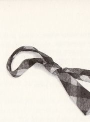 Juozo Miltinio kaklaraištis. Iš kn.: V. Palčinskaitė. Atminties babilonai, arba Aš vejuos vasarą
