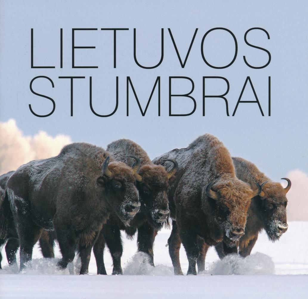 Lietuvos stumbrai
