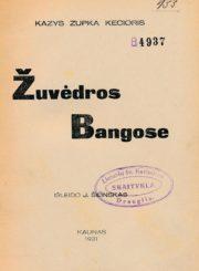 Zupka-Kecioris, Kazys. Žuvėdros bangose. Kaunas, 1931. 48 p.